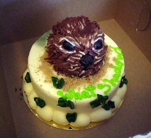 groundhog cake | Flickr - Photo Sharing!