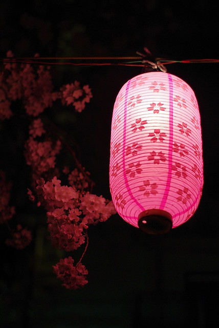 Sakura and a Japanese Lantern in the dark