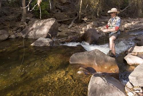 Fly Fishing the creek