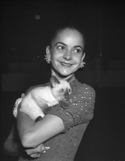Ballerina Kathleen Gorham at a cat show, Sydney Town Hall, 2 December 1957 / photographer Jack Hickson