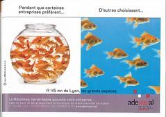 Le Mâconnais Val-de-Saône accueille votre entreprise (Entreprendre, 2008/11,N°225)