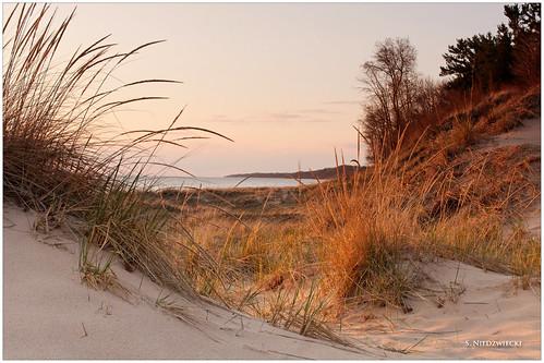 sunset beach grass sand dunes lakemichigan greatlakes muskegoncounty meinertpark artprize stacyniedzwiecki stacycossolini puremichigan 1stjd