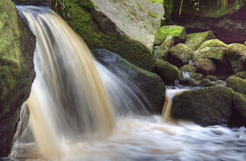 In Padley Gorge #2