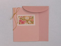 Paper Craft 155 Photos | blank note card w/envelope | 732