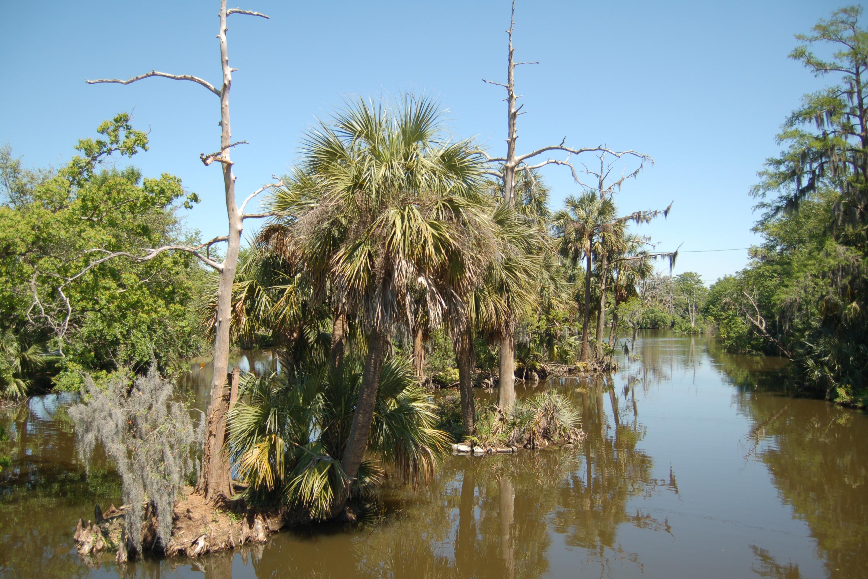 Louisiana Scenery Scenic Photos: Louisia...
