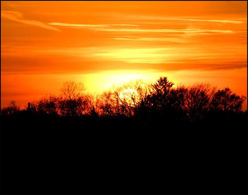 trees sunset sky orange sun black yellow clouds pennsylvania anniversary glenrock