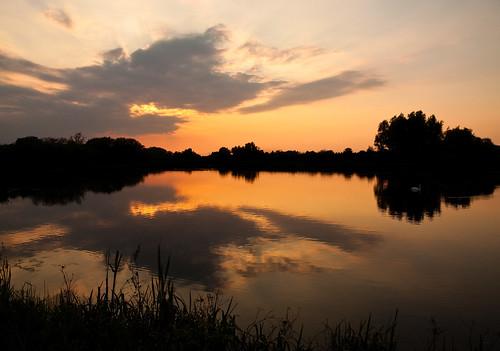 sunset lund reflection bird skåne swan pond day sweden pictureperfect canonefs1785mmf456isusm värpinge citrit enbrabild pwpartlycloudy