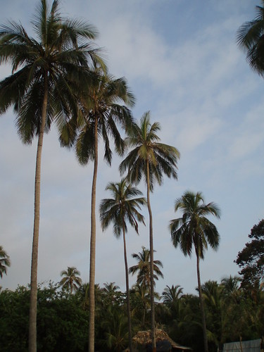 parque colombia tayrona nacional santamarta 2009 caribe vagamundos carlosolmo