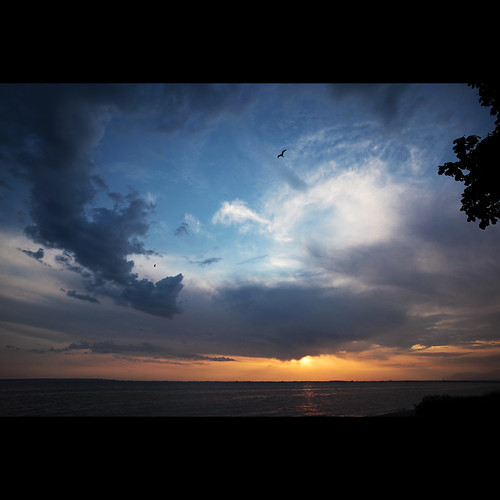 sunset clouds britishcolumbia seagull surrey crescentbeach canonef1740mmf40lusm kvdl
