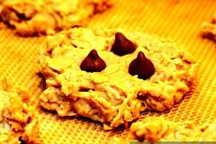 oatmeal peanut butter cookies    MG 6812