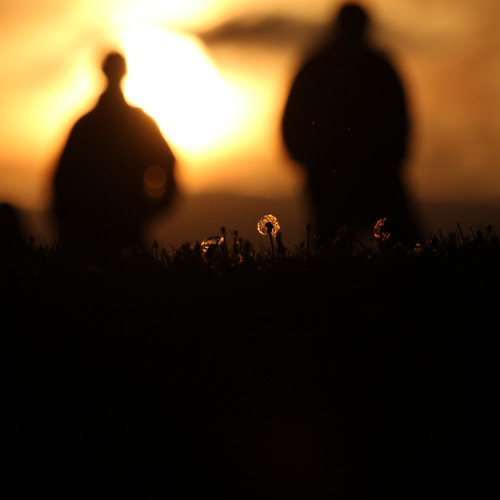 county ireland sunset people dublin abstract men silhouettes dandelion killiney steiner62 killineyhill