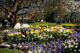 April Zoo