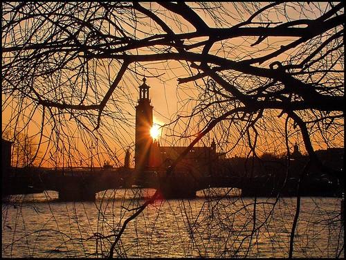 sunset sweden stockholm cityhall branches soe theunforgettablepictures platinumheartaward goldstaraward vanagram vosplusbellesphotos magicunicornverybest