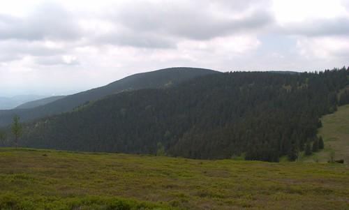 nature landscape spring pohorje