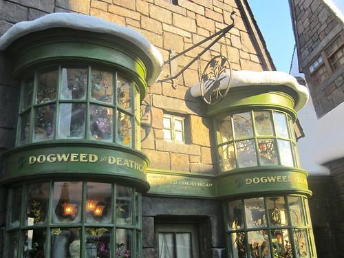Wizarding World Wednesday