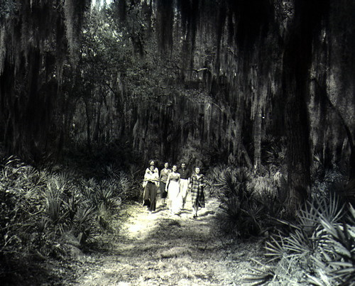 People walking through the forest | Flickr - Photo Sharing!