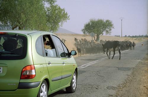 Rural jam