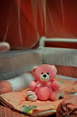 sweetness(0.0), organ(0.0), teddy bear(1.0), textile(1.0), red(1.0), stuffed toy(1.0), pink(1.0), valentine's day(1.0), toy(1.0),