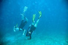 scuba diving(0.0), diving(0.0), underwater diving(1.0), sports(1.0), recreation(1.0), outdoor recreation(1.0), marine biology(1.0), divemaster(1.0), water sport(1.0), underwater(1.0), freediving(1.0),