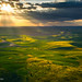 Golden Light on the Palouse by Zack Schnepf