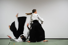 daitå ryå« aiki jå«jutsu, aikido, hapkido, individual sports, contact sport, sports, combat sport, martial arts, japanese martial arts,