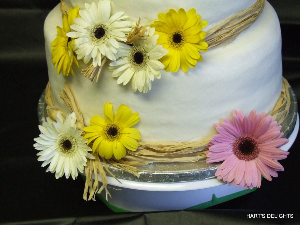 Daisy Wedding Cake a photo on Flickriver