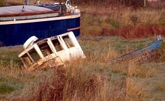 Adrift on a sea of grass -09