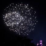 Disneyland June 2009 0111