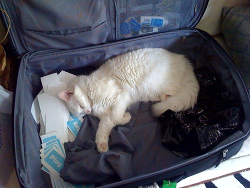 unpacking assistant