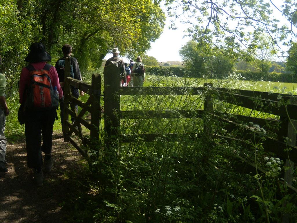 Through a gate Pluckley Circular