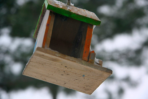 winter sunset snow cold ice birdhouse northcarolina fayetteville canonxsi