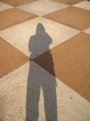 Shadow on a Board
