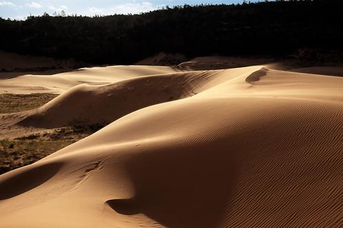 park coral sunrise state dunes southernutah kanab sanddunes coralpinksanddunes
