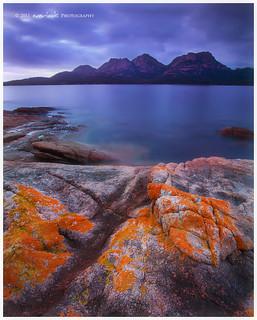 Farewell Tasmania
