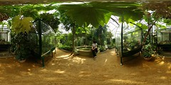 Large greenhouses of the Tête d'Or park