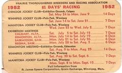 Horse racing 1950's
