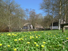 THE RESRAURANT: 'THE FOREST MILL', MARSELISBORG FOREST, AARHUS, DENMARK.