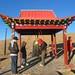 SIT Study Abroad: Mongolia