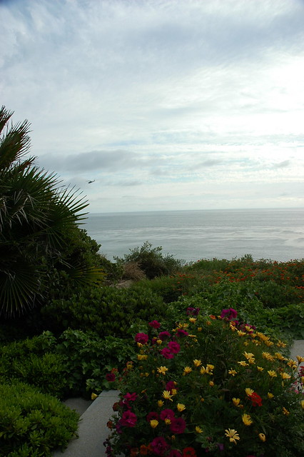 Flower Path With Black Heliocopter In Distance Over The Pacific Ocean Meditation Garden