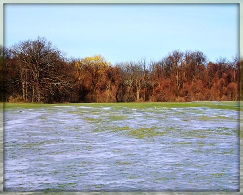 blue trees sky brown snow newyork green ice pentax jjp glencove k200d timeforspringalready