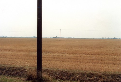 Fenland Lincolnshire, Summer 1989