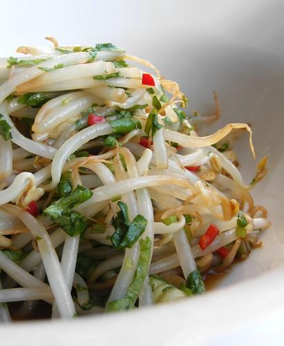 taugé salade recept
