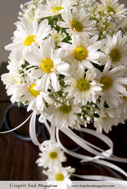 daisy wedding bouquet flickr photo sharing