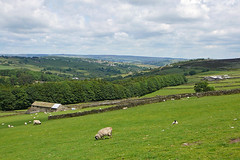 View from the Bronte Way towards Haworth