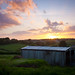 Sunset over Huxtable Farm by MartinDoyleUK