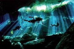 Sinkholes | Riviera Maya