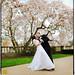 Blossoming. by Ryan Brenizer
