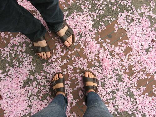 Sandalen sind wieder da