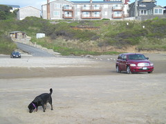 We were a little nervous about parking on the beach with our little tires