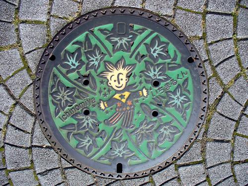 Icinomiya city's manhole 2(愛知県一宮市のマンホール2)